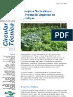 Principios norteadores da producao organica