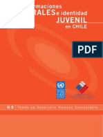 PNUD - Transformaciones culturales e identidad juvenil