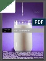 247810270 Informe Practica 2 Leches Fermentadas