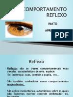 2. COMPORTAMENTO REFLEXO...