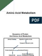 Caudales Amino Acid Metabolism