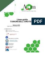 Linee guida tumori dell'urotelio