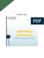 CO GUIA N01