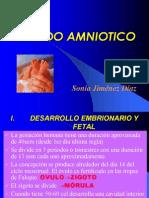LIQUIDO AMNIOTICO3