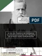 Apogeu e crise da Monarquia Brasileira