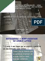 TEMA 1 SISTEMA DE FLEXÃO NOMINAL DA LÍNGUA LATINA