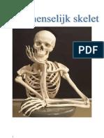 Het menselijk skelet algemeen