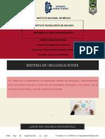 Organización Matricial Vazquez Portillo