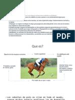 Equinos Ana (1)