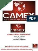 Conferencia 23 y 24 Curso Gestion de Riesgos Financieros 29 de Enero 2021 (2)