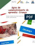 Estágios de Desenvolvimento Do Aprendiz- Criança (1)