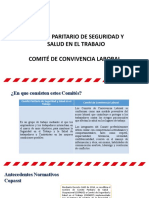 Conformacion COPASST y COCOLAB