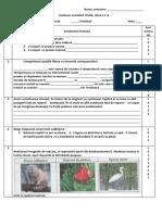 Evaluare Sumativă Cl 5