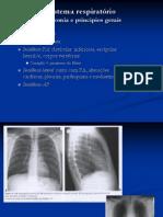 imagem toraxicw - pulmão e coração