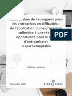 La Procédure de Sauvegarde Pour Les Entreprises en Difficultés de l'Application d'Une Procédure Collective à Une Réelle Opportunité Pour Le Chef d'Entreprise Et l'Expert-comptable