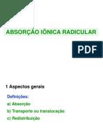 6-Absorção iônica radicular (4)