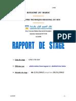 rapport de stage labo