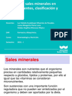 Clase 4 Sales minerales