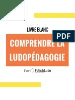 Felix_Ludo_Livre_Blanc_1_2020_