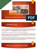 Narayan Nagbali Puja Vidhi, Benefits, Cost and Dates