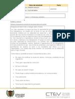 Plantilla protocolo individual 2222