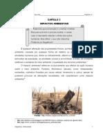 Capi_2- Impactos Ambientais