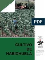 Cultivo Habichuela Converted
