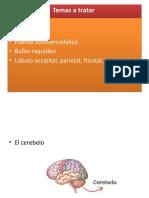 exposicio de psicologia general