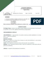 Ficha de Trabalho_Figuras Planas