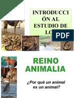Tema_4_clase__ANIMALES_PROP_BIO_2014