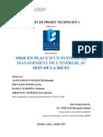 Rapport Bicec
