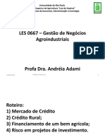 Aula_financeiro_2_adami19 - agronegócio