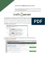 Trafiic Server