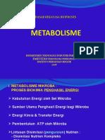 Drb II. Metabolisme - Cara Mo Mendptkan Energi 2003