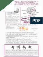 Interação entre sistema nervoso_sistema muscular e coluna vertebral ao sentar em uma cadeira
