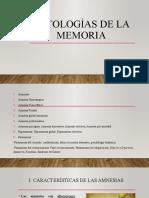 Patologías de la memoria