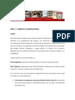 11 - Derecho Constitucional