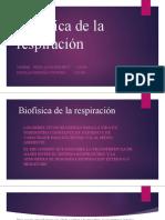 Biofísica de La Respiración