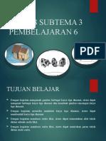 Tema 8 Subtema 3 Pembelajaran 6