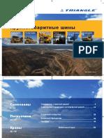 Triangle Krupnogabaritnye Shiny.pdf
