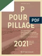 P For Pillage 2021 - Avec Les Données de 2020