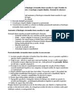 Anatomia și fiziol. sistem dento.max.