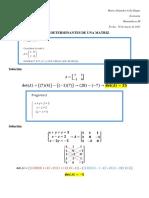 PDF Quiz Determinantes - 30 de marzo