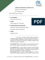 Informe Feliciano Rodrigo 346-2016