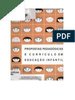 Propostas Pedagógicas e Currículo Em Educação Infantil. Um Diagnóstico e a Construção de Uma Metodologia de Análise
