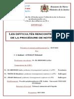 Rapport DDA Tribunal final (2)