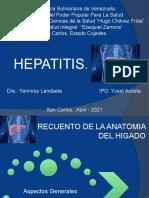 Presentacion Hepatits