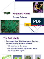 AP Bio Plants (KFogler)