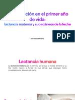 Alimentación en El Primer Año de Vida- Lactancia Materna y Sucedáneos de La Leche