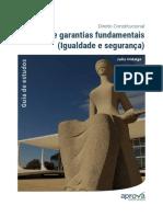 direitos-e-garantias-fundamentais-igualdade-e-seguranca-videoaula-2